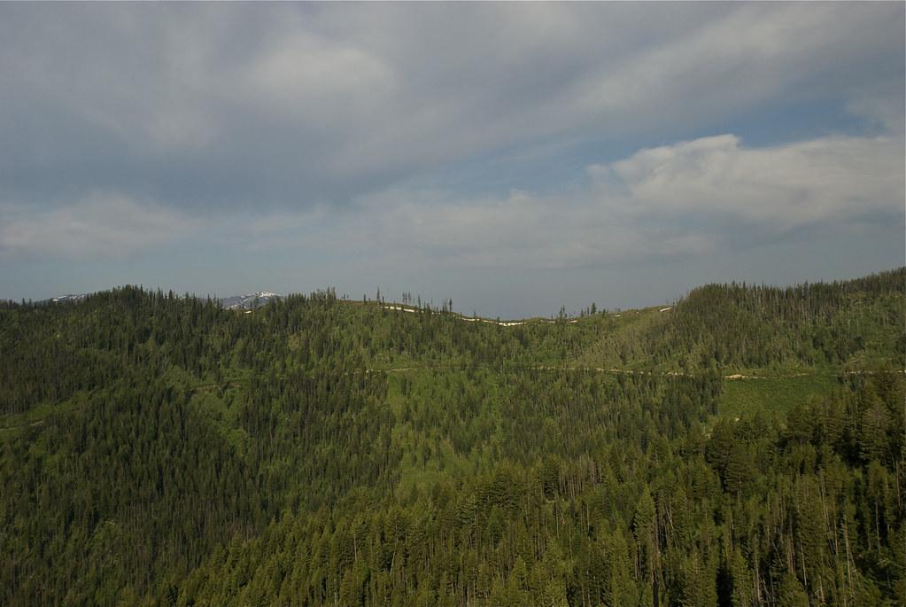 KooKooSint Ridge
