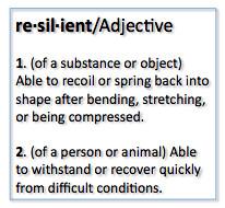 Career Resilience