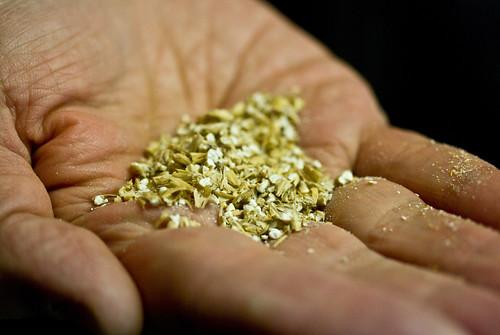 grain for single malt