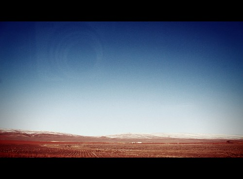 Wine, Eastern Washington, 2011