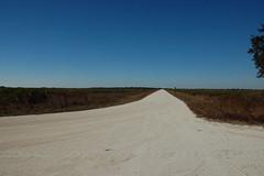 Kissimmee Prairie Desolation