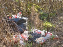 Ma chi mai lascia rifiuti in queste zone così belle?