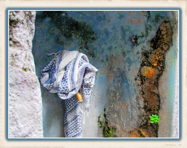 fontana con lino