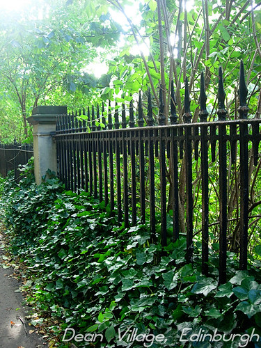 Fence-dean-village