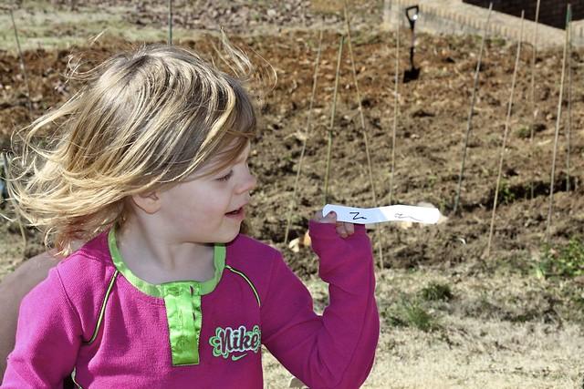Doodlebugs N for her Seedlings