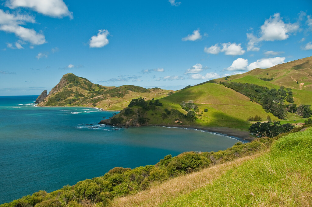The North Coast of the Coromandel