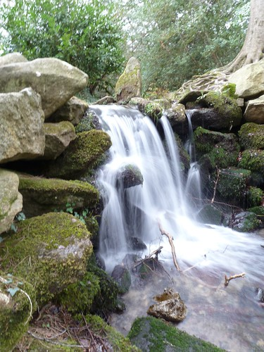 Waterfall Marlay Park Rathfarnham 21 March