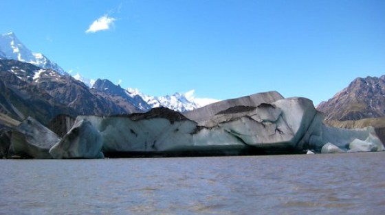 Glacier Explorers Mt Cook