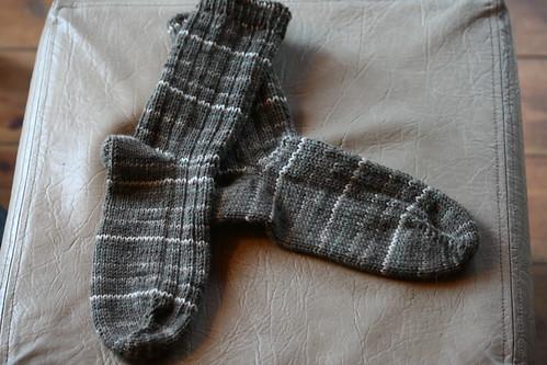 Ollies 6 Ply Socks