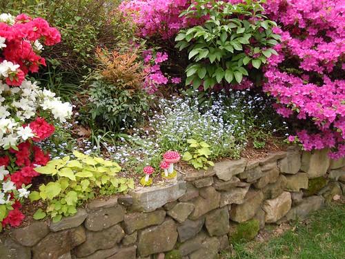 Plush mushrooms amid spring garden bloom