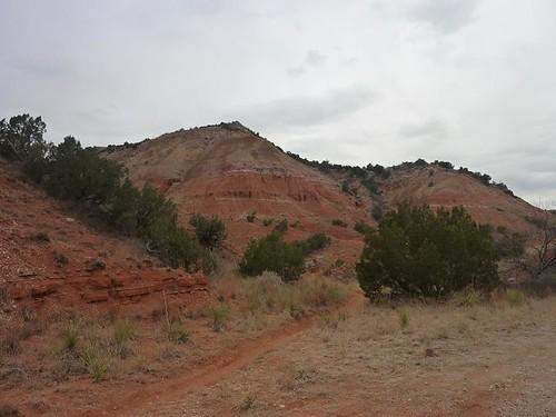 Palo Duro 15