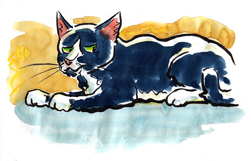 small-cat1
