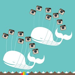 Instagram double fail whale.