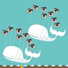 Instagram double fail whale.