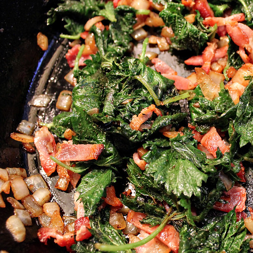 Nettles with Bacon