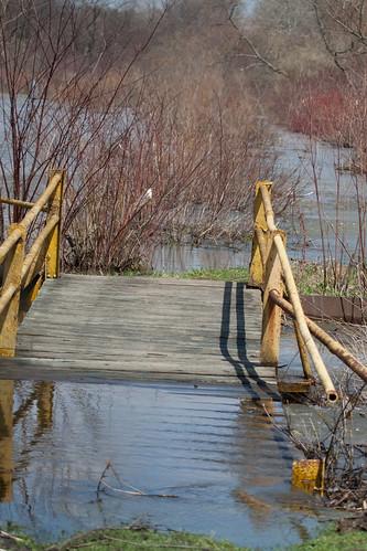 Bridge - flooded