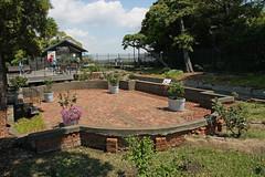 江の島めぐり―サムエル・コッキング苑熱帯遺構(Relic of Samuel Cocking garden, Enoshima, 2011)