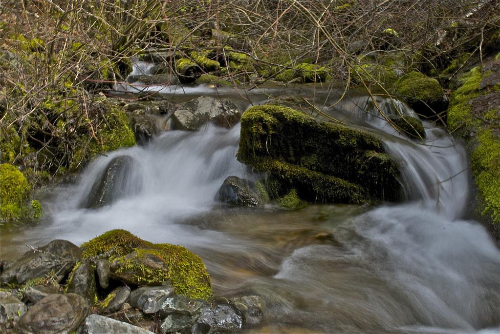 Munson Creek