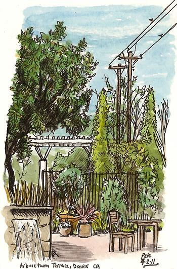 arboretum terrace