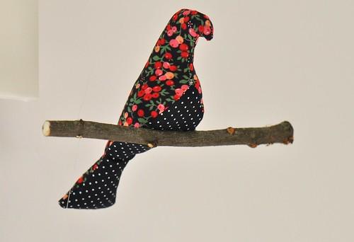 oiseaux groseille (4)