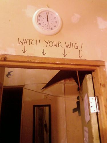 Watch Your Wig! by Karyn Ellis