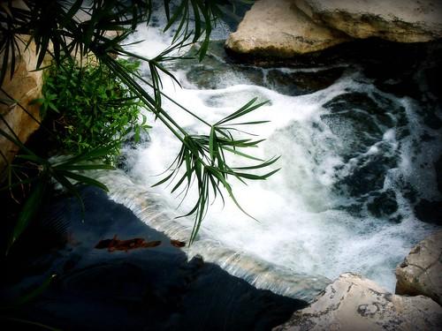 June 20 - Water