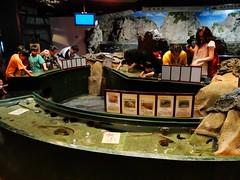 夜探台灣水域館:觸摸池