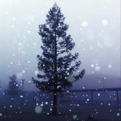 雪を降らせてみた。これも(・∀・)イイネ!!