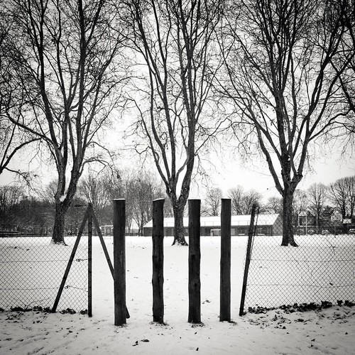 The Entry of Winter/L'entrée de l'hiver - Photo : Gilderic