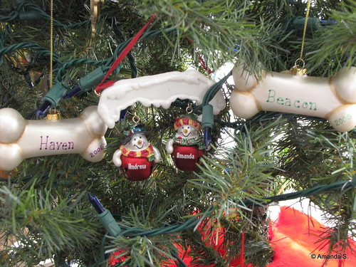 352/365 Name Ornaments