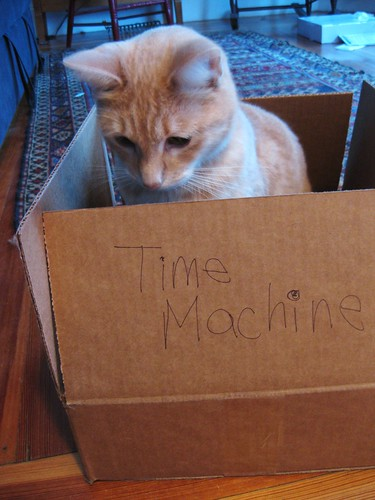 Teddy's Time Machine