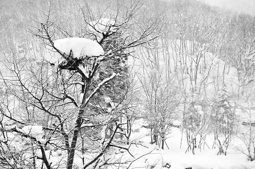 Japan winter far from the coast