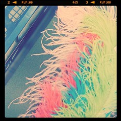 A bouquet of feathers for the mantel~