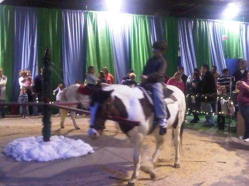 2010.11.27: Pony Ride
