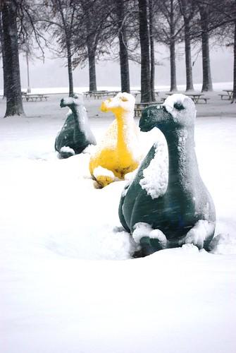 Cold Camels