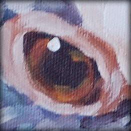 Mika - Eye Detail