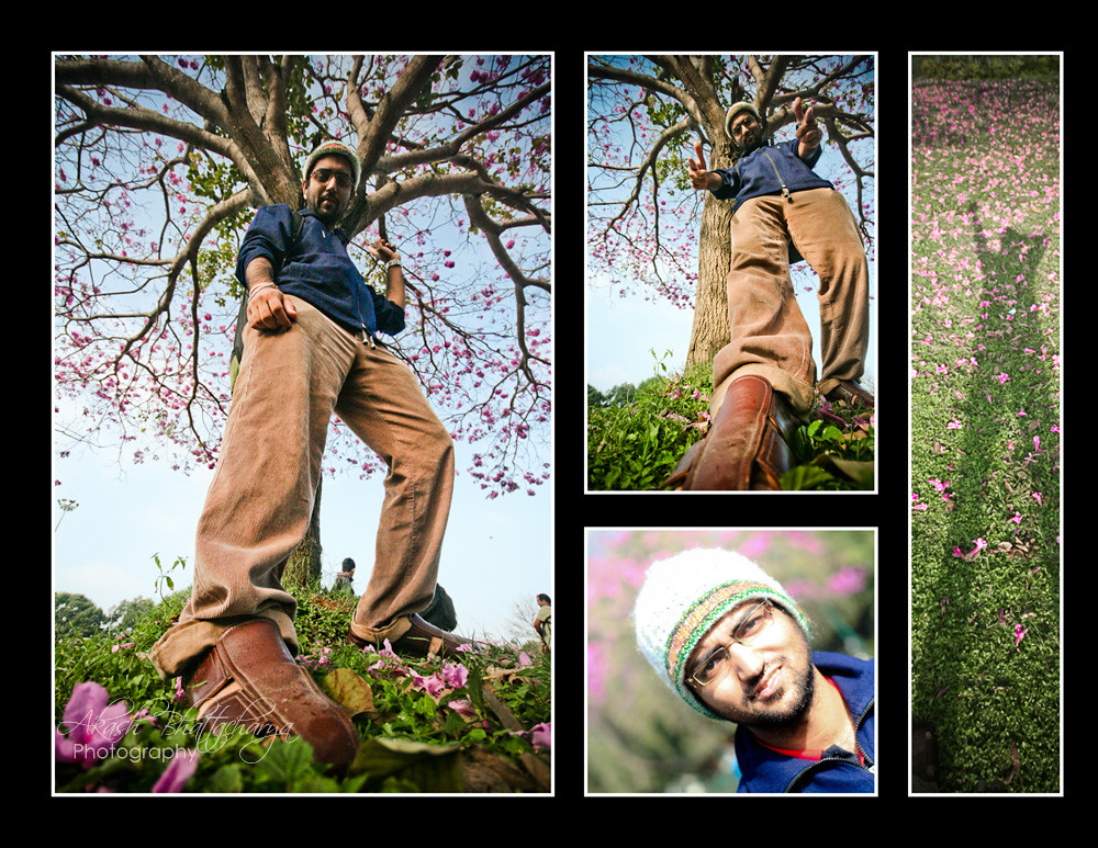 Me @ Tabebuia Flowers | Bangalore