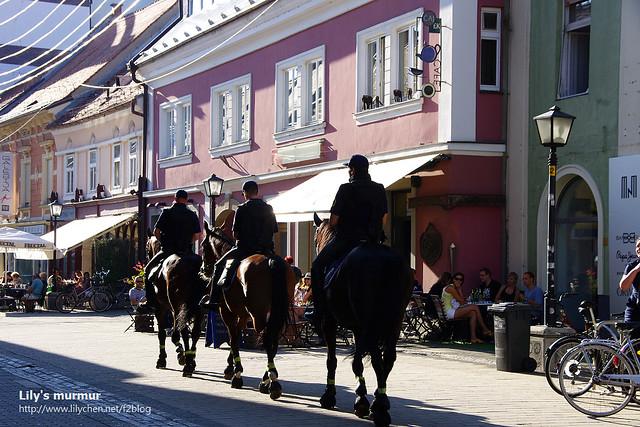 三位騎警帥氣的經過,馬兒們的皮毛在陽光下閃閃發亮,肯定是被照顧的很好吧。