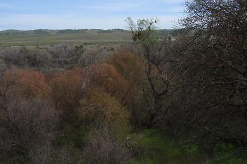Nacimiento River 01