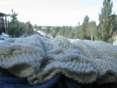Textured Seed-Rib Cable Armwarmer