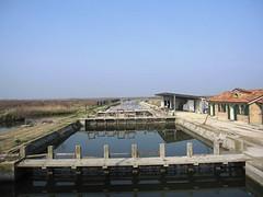 Laguna Sud di Venezia