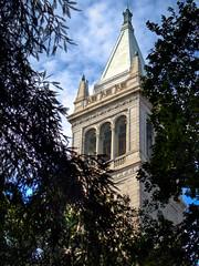 UC Berkeley - Campanile by Scott Loftesness