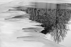 abstracted winter by briphi