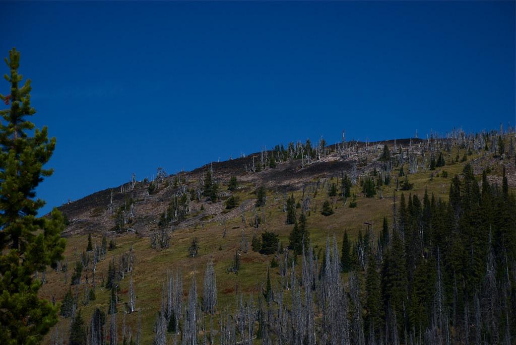 West from Burnt Fork Pinnacle