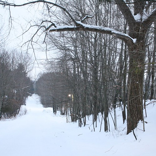 The road from the townhouses at SpringHill