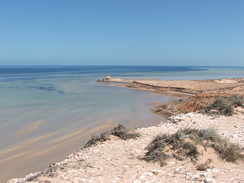 Shark Bay's Eagle Bluff 1