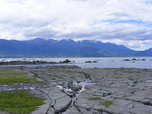 Picture from Kaikoura, New Zealand