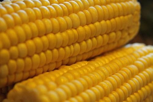 a little corny