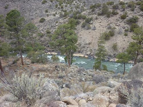 Wild Rivers 17