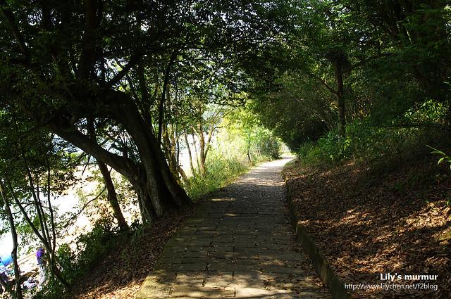 涵碧步道還蠻好走的,也有樹蔭,走起來很舒服。